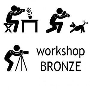 Icon_Bronzekurs